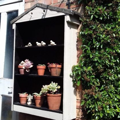 The Auricula Theatre